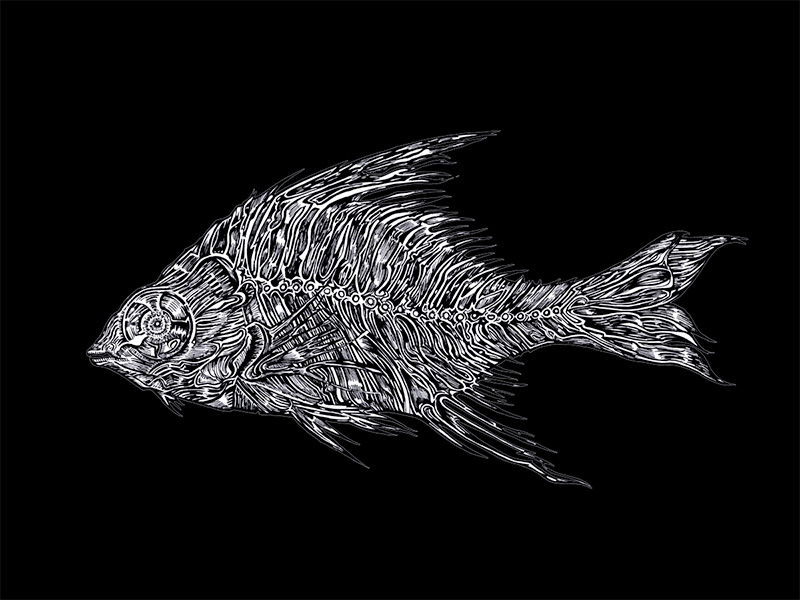 Fish, ink drawing may 2014 by Charlie Drawing, Artist in Berlin